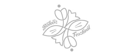 Bőköz Fesztivál | Csernik Szende mesemondó
